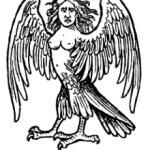 モンハン4g 新モンスター セルレギオスの画像とハーピー mh4gの記事
